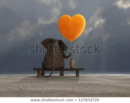 Сток-фото: слон · собака · сердце · шаре