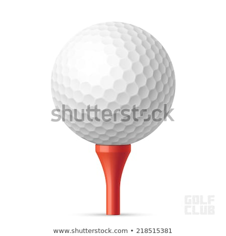 tee and golf-ball Stock photo © ssuaphoto