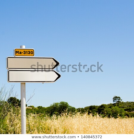 blank old directional road sign post over blue sky stock photo © tuulijumala