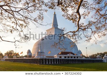 Pagoda templom történelmi Sri Lanka kő Ázsia Stock fotó © meinzahn