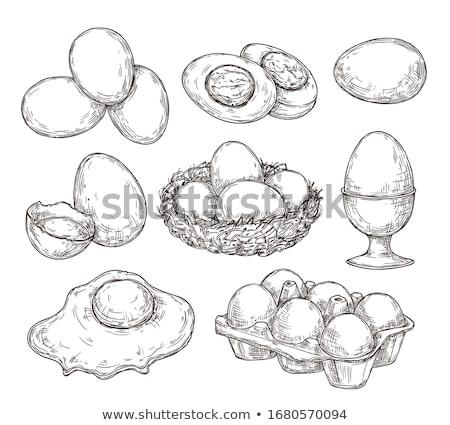 свежие яйца линия цвета оболочки Сток-фото © raphotos