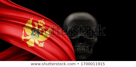 Montenegro flag skull Stock photo © dvarg