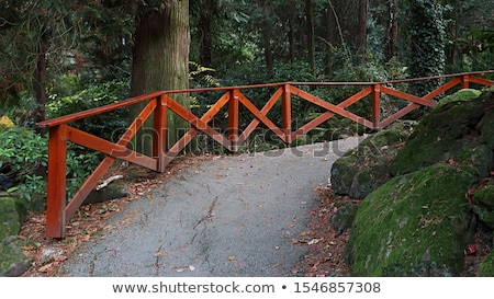pathway in forest with wooden side rails stock photo © ziprashantzi