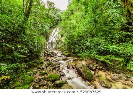 waterfall in anton stock photo © rmbarricarte