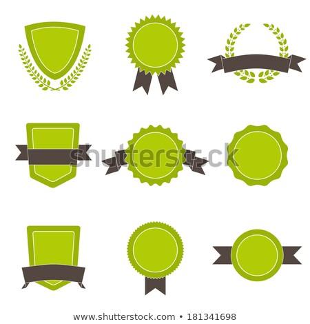 arany · kitűző · szalag · zöld · vektor · sport - stock fotó © fresh_5265954