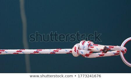 czerwony · liny · odizolowany · biały · liny · drutu - zdjęcia stock © inxti