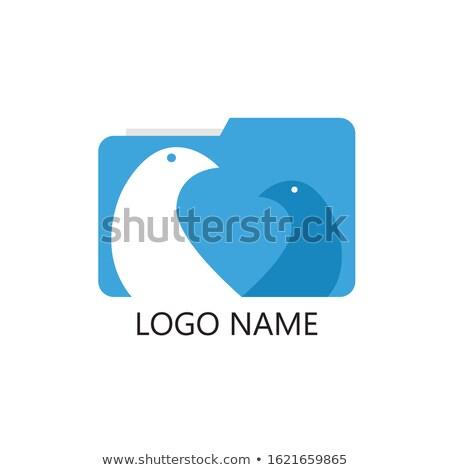 baixar · aplicativo · ícone · projeto · isolado · branco - foto stock © kyryloff