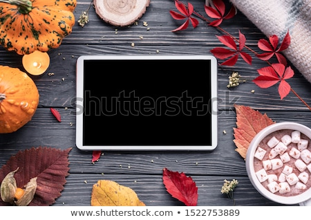 Advertisement Promo Discount on Thanksgiving Day Stock photo © robuart