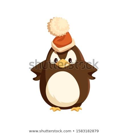 怒っ ペンギン サンタクロース 帽子 孤立した 文字 ストックフォト © robuart