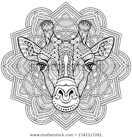 żyrafa kolorowy granicy ilustracja strony szczęśliwy Zdjęcia stock © bluering