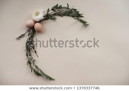 dekoratív · fából · készült · húsvéti · tojások · zöld · ág · gyönyörű - stock fotó © dash