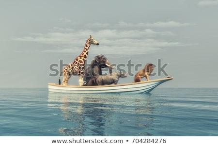 Animais barco costa árvore pássaro grupo Foto stock © colematt