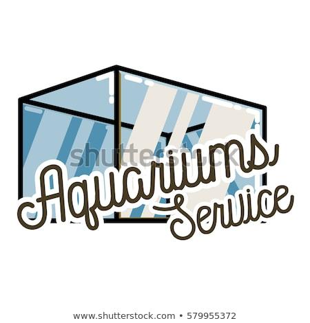 Color vintage aquariums service banner Stock photo © netkov1