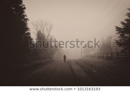 kobieta · odizolowany · biały · dziewczyna · strony - zdjęcia stock © lovleah