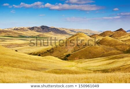 Paisaje desierto Georgia frontera Azerbaiyán naturaleza Foto stock © borisb17