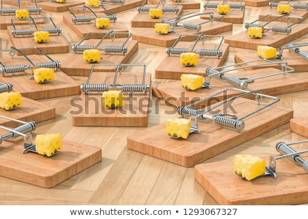 Mousetrap With Cheese Stock photo © albund