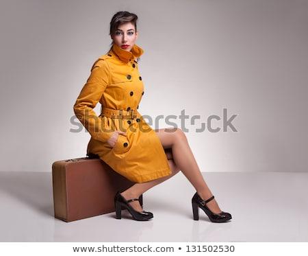 beautiful brunette with suitcase stock photo © zastavkin