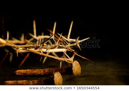 crucifixion nail Stock photo © kovacevic