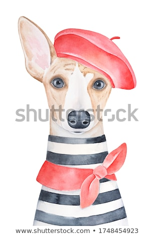 Stock photo: Child with red scarf and beret