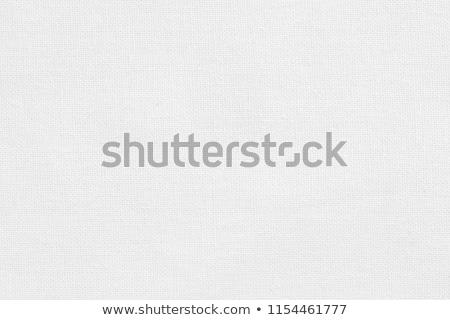 Biały bawełny zdjęcie kobieta bielizna dziewczyna Zdjęcia stock © dolgachov
