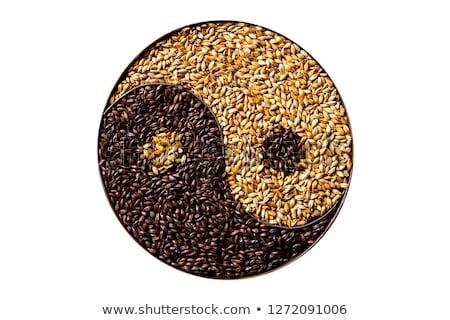 Yin yang zaden uit pompoen donkere Stockfoto © TheFull360
