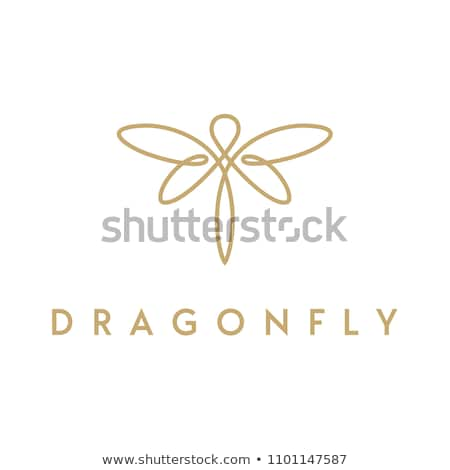 vetor · ícone · libélula · dormir · inseto · asa - foto stock © zzve