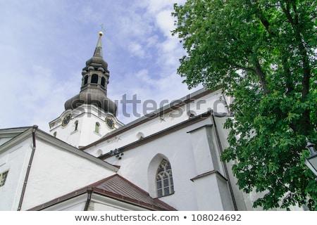 igreja · virgem · cidade · velha · céu · parede · folha - foto stock © chrisdorney