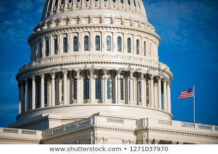 gebouw · Washington · DC · zonlicht · dag · USA · huis - stockfoto © lunamarina