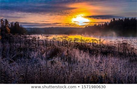 Sessizlik gün batımı güzel su bulutlar manzara Stok fotoğraf © Niciak