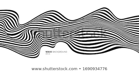 Black and white monochrome smooth lines abstraction Stock photo © saicle
