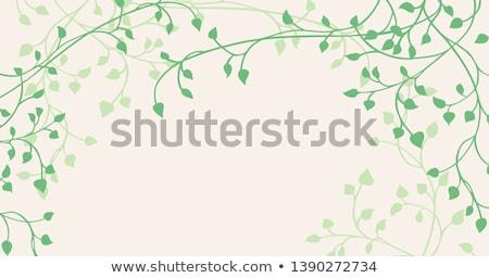 Borostyán magas döntés textúra fal levél Stock fotó © pedrosala