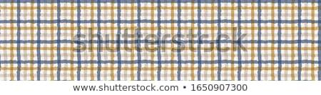 Kék szalagok százszorszép keret szalag kép Stock fotó © Irisangel