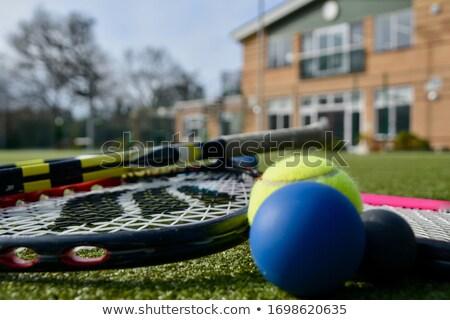 Kék tenisz fallabda illusztráció sport háttér Stock fotó © bluering