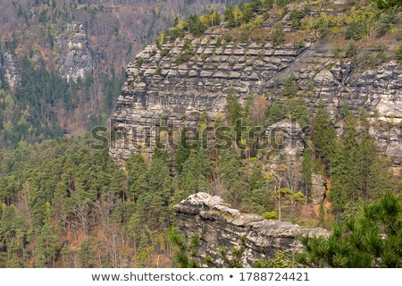 Landscape with a Mesa in Saxony Stock photo © manfredxy
