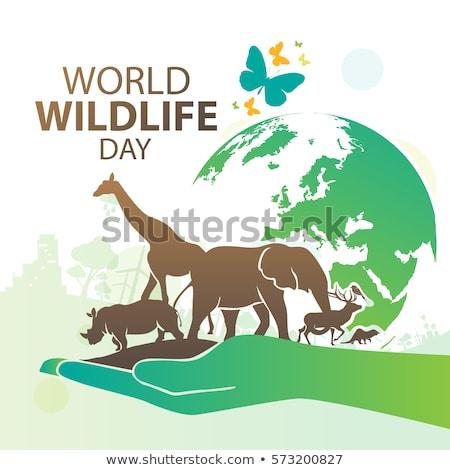 Mundo animais selvagens dia calendário cartão férias Foto stock © Olena