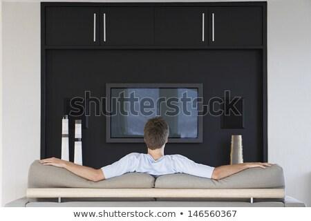 человека · телевизор · голову · телевизор · вектора · дизайна - Сток-фото © rogistok