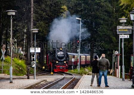 Treinstation zomer bloem huis trein Europa Stockfoto © LianeM