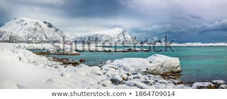 montanha · cena · ilustração · neve · verde · inverno - foto stock © colematt