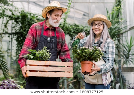 Happy senior  florist woman standing and using sprayer in the la Stock photo © boggy
