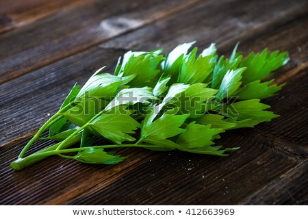 Ot ahşap gıda ahşap yaprak Stok fotoğraf © Virgin
