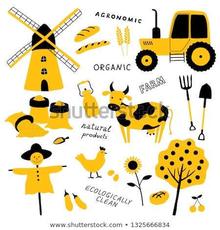 Agricoltore farm strumenti macchine cartoon lavoro Foto d'archivio © robuart