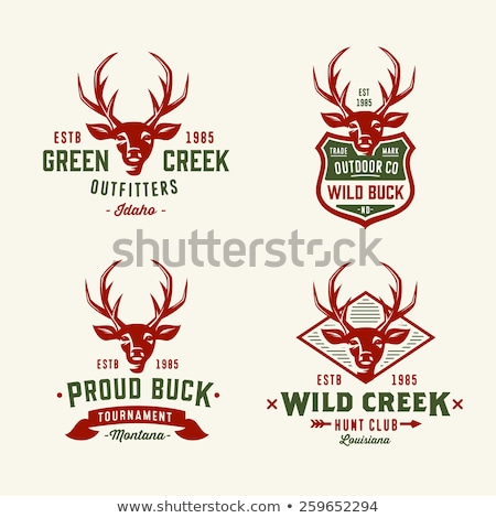 color vintage hunting club banner stock photo © netkov1