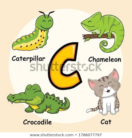 Stok fotoğraf: C · harfi · karikatür · tırtıl · örnek · alfabe