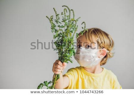 fiú · allergiás · orvosi · maszk · bokor · kezek - stock fotó © galitskaya