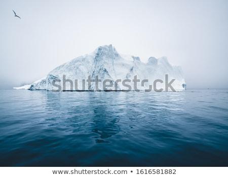 ártico natureza paisagem imagem foto Foto stock © Maridav