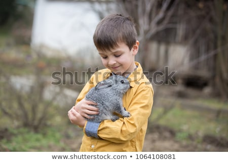 Stock photo: toddler boy caresses and playing with rabbit in the petting zoo. concept of sustainability, love of