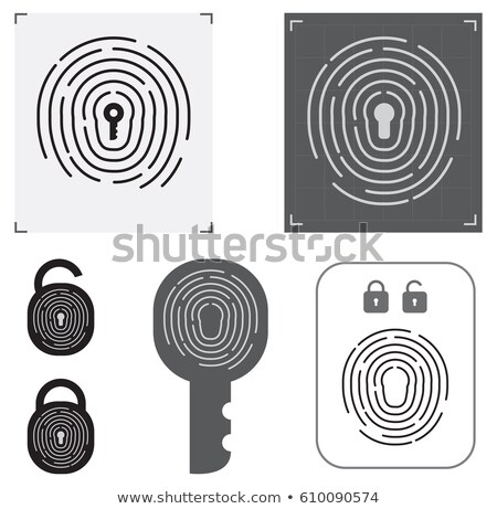 Safety security lock user linear icon. Password protected login. authorization concept. Editable str Stock photo © kyryloff