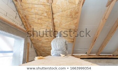 Worker insulating wall of a new building on construction site Stock photo © Kzenon