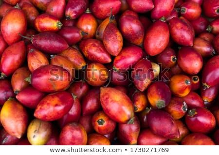 Ağaç domates pazar madeira taze ada Stok fotoğraf © boggy