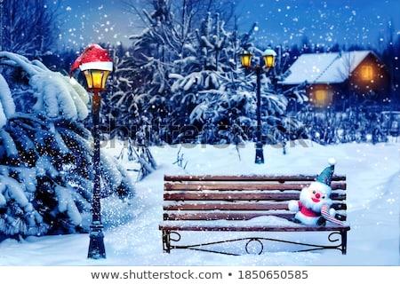 凍結 · 妖精 · ランタン · ファンタジー · 肖像 · 美しい - ストックフォト © zastavkin